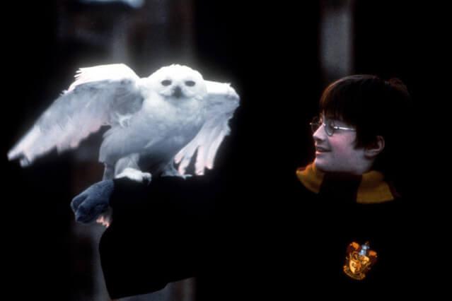 ハリーポッターと賢者の石 あらすじ 簡単